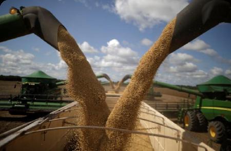 Lanzaron un programa para reducir las emisiones de carbono en el agro