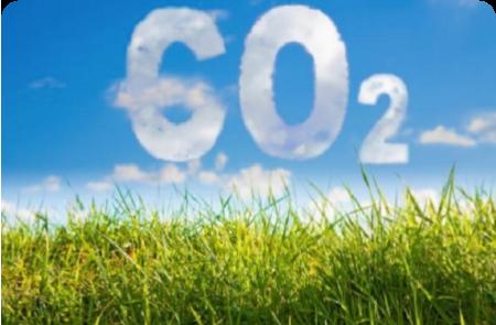 Lanzan el Programa Argentino de Carbono Neutro para Alimentos, Bebidas y Bioenergías de Exportación