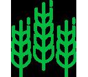 icon-trigo-mesa-sectorial